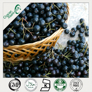 Aronia Extract (Chokeberry)